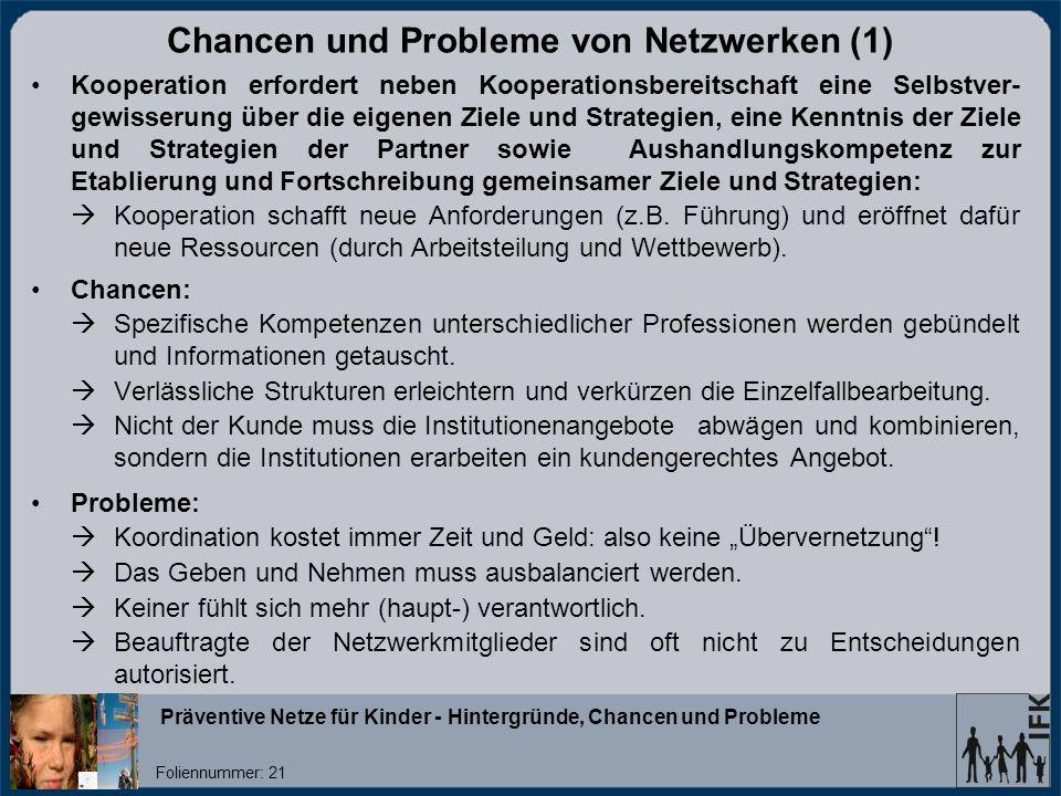 Chancen und Probleme von Netzwerken (1)