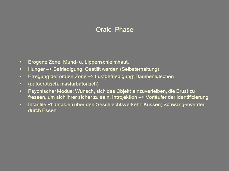 Orale Phase Erogene Zone: Mund- u. Lippenschleimhaut.