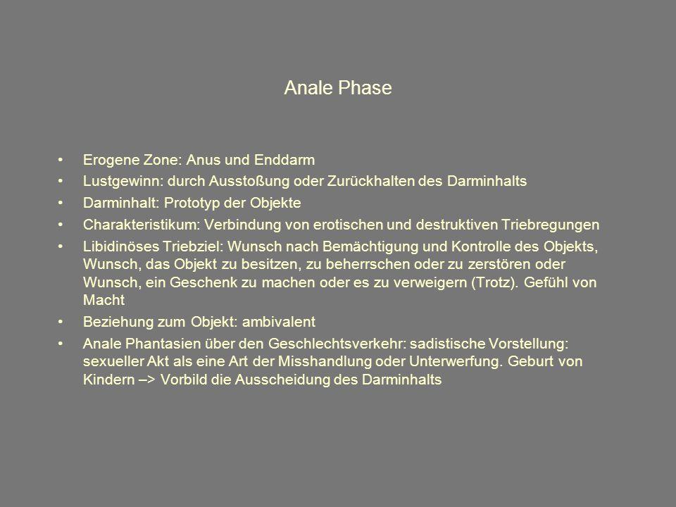 Anale Phase Erogene Zone: Anus und Enddarm