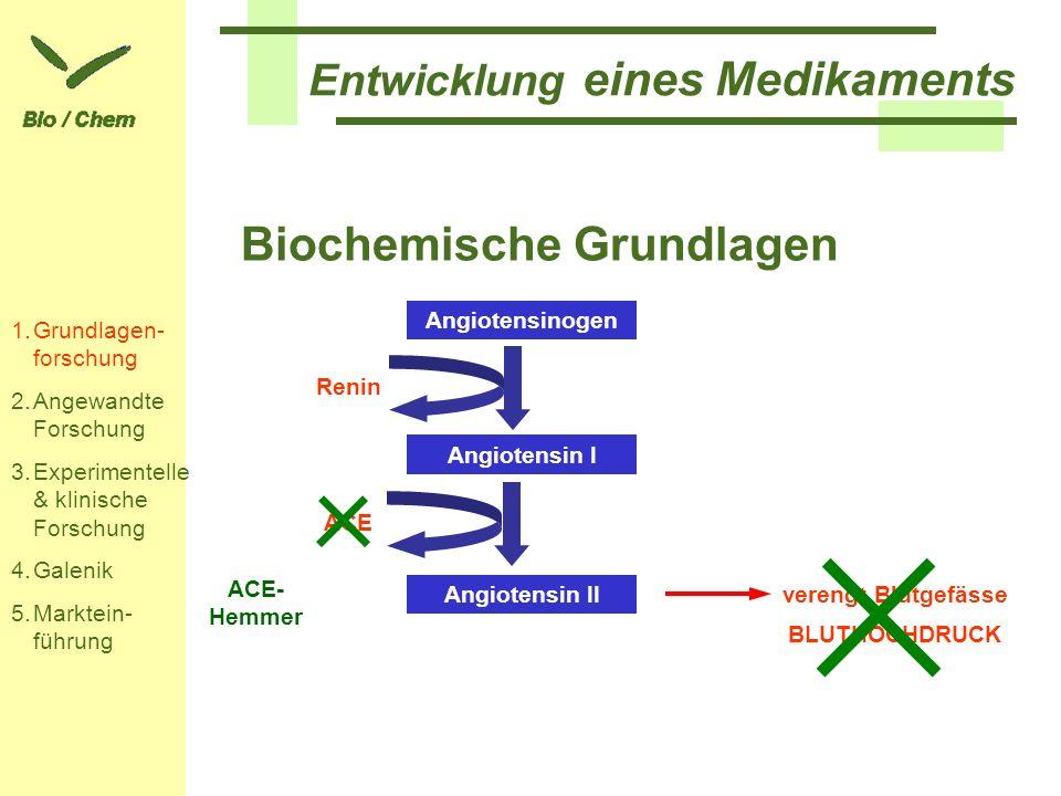 Biochemische Grundlagen