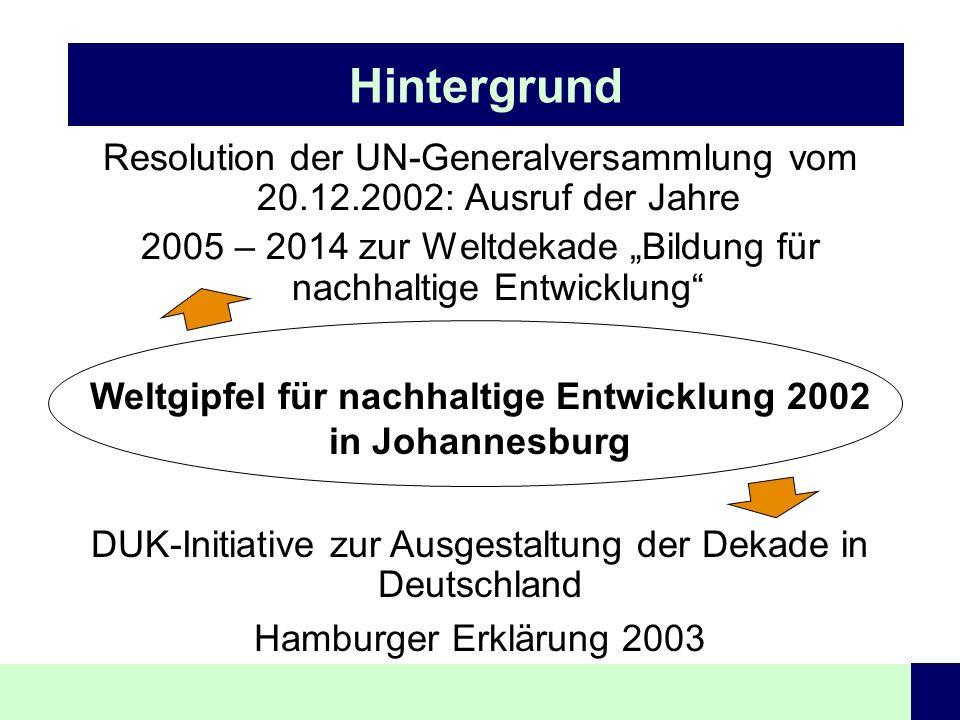 Weltgipfel für nachhaltige Entwicklung 2002 in Johannesburg
