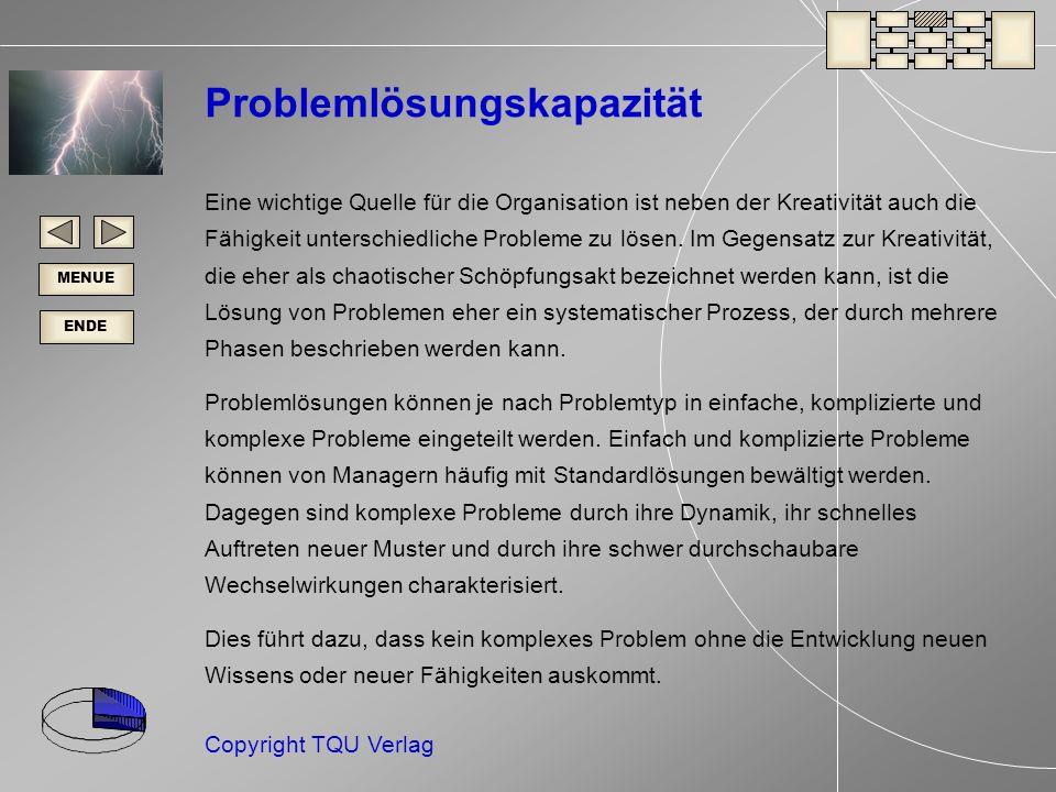Problemlösungskapazität