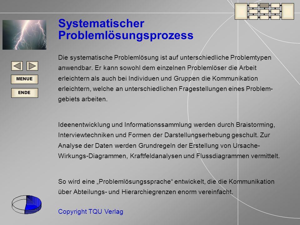 Systematischer Problemlösungsprozess