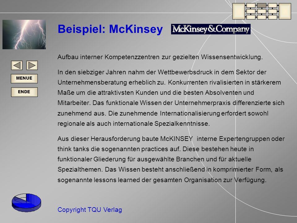 Beispiel: McKinsey Aufbau interner Kompetenzzentren zur gezielten Wissensentwicklung.