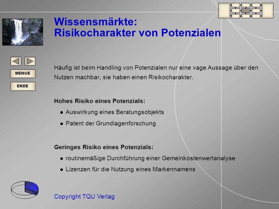 Wissensmärkte: Risikocharakter von Potenzialen