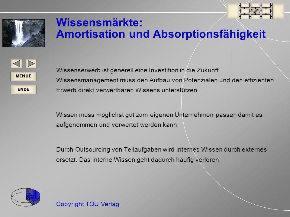 Wissensmärkte: Amortisation und Absorptionsfähigkeit