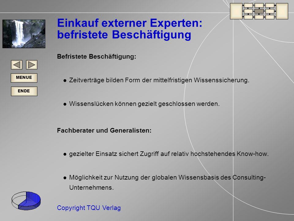 Einkauf externer Experten: befristete Beschäftigung