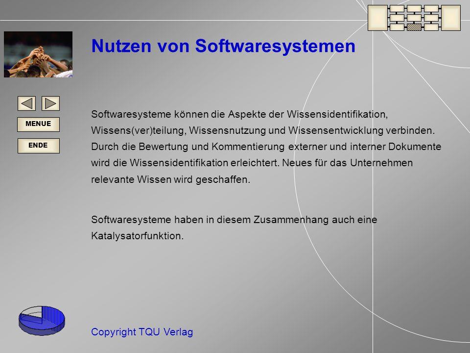 Nutzen von Softwaresystemen
