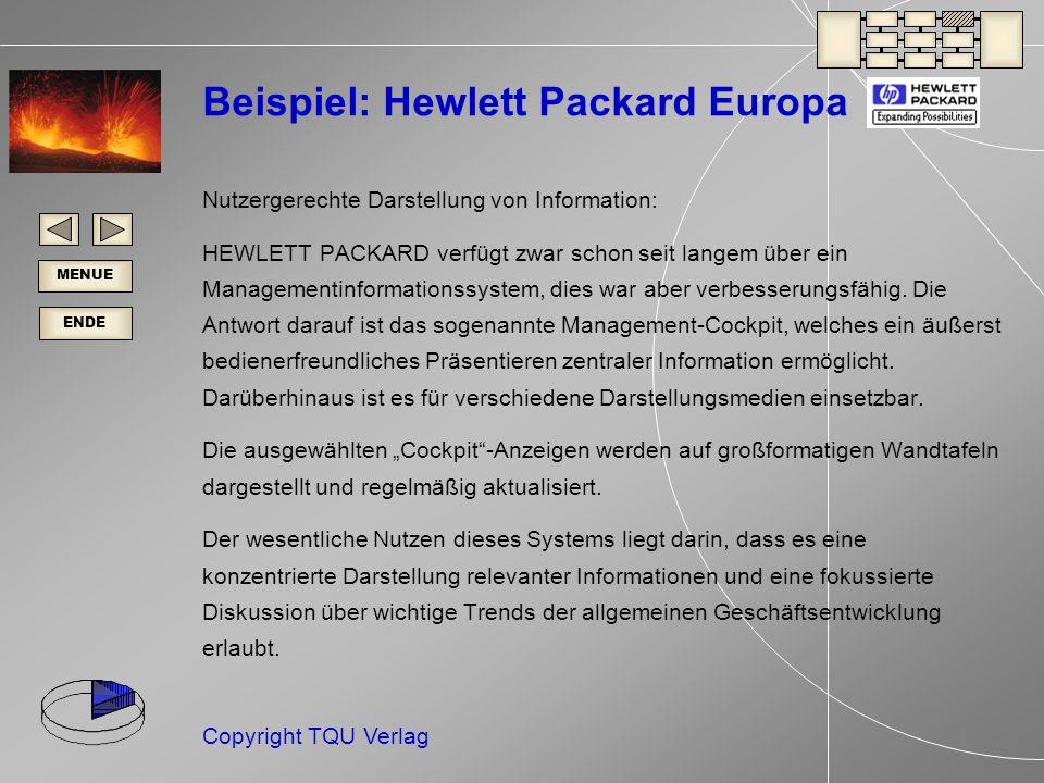Beispiel: Hewlett Packard Europa