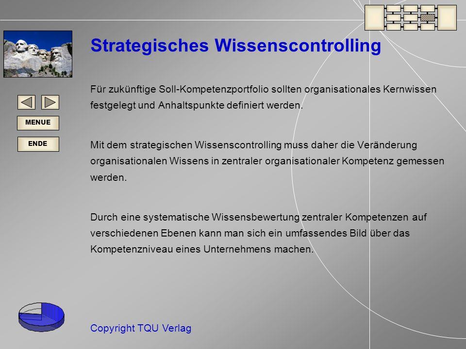 Strategisches Wissenscontrolling