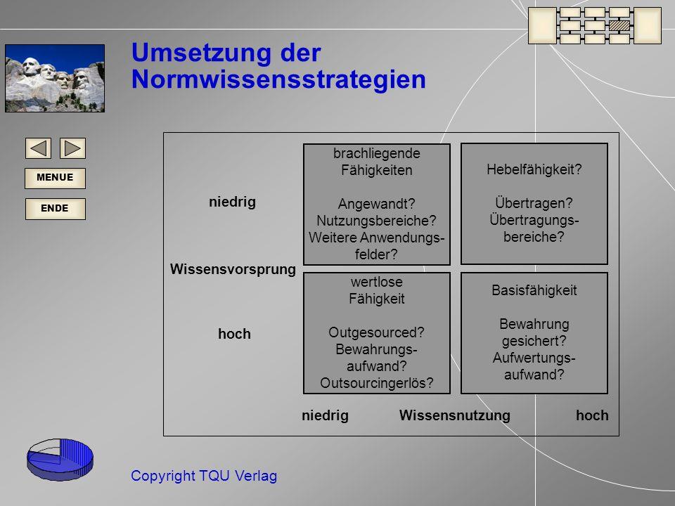 Umsetzung der Normwissensstrategien