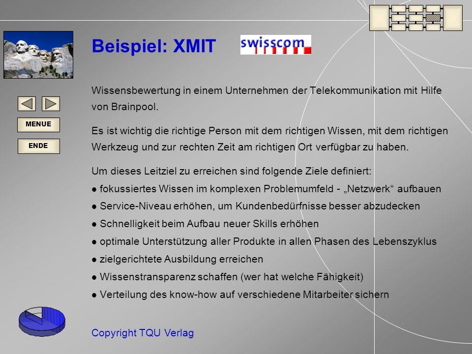 Beispiel: XMIT Wissensbewertung in einem Unternehmen der Telekommunikation mit Hilfe von Brainpool.