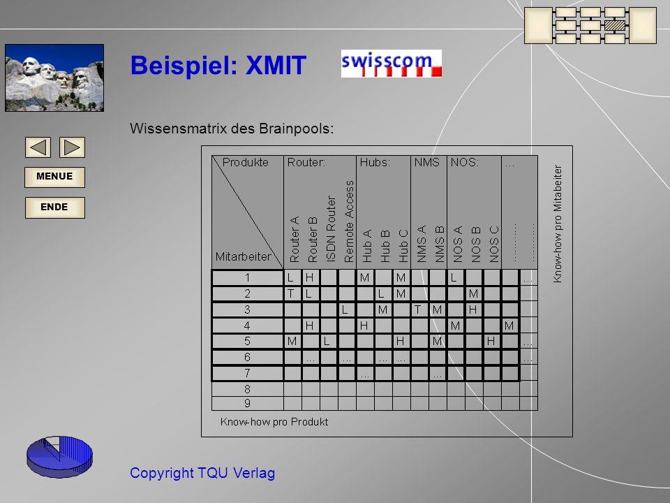Beispiel: XMIT Wissensmatrix des Brainpools: