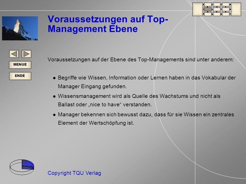 Voraussetzungen auf Top-Management Ebene