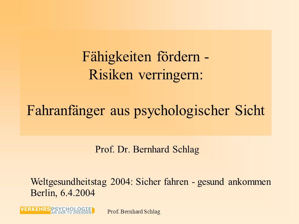Prof. Dr. Bernhard Schlag