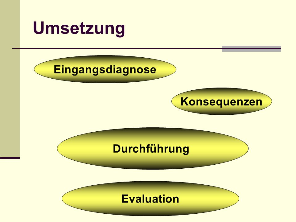 Umsetzung Eingangsdiagnose Konsequenzen Durchführung Evaluation