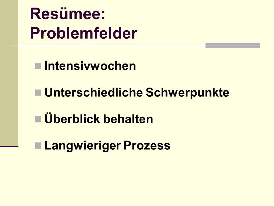 Resümee: Problemfelder