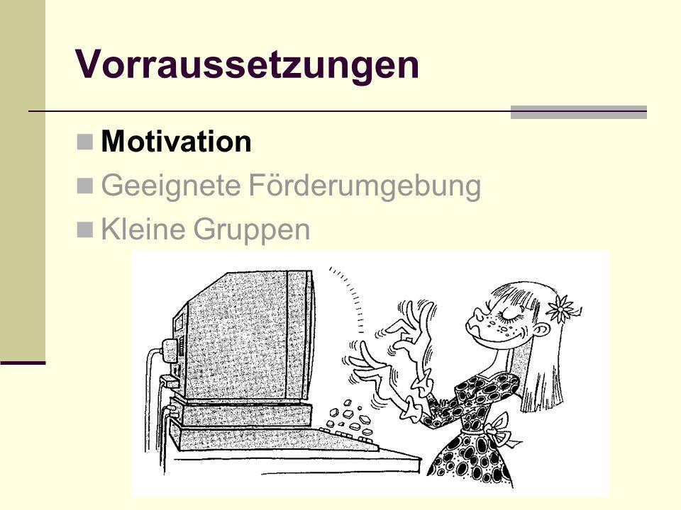Vorraussetzungen Motivation Geeignete Förderumgebung Kleine Gruppen