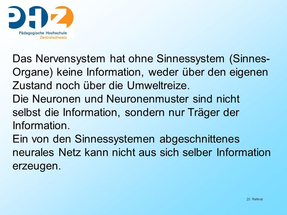 Das Nervensystem hat ohne Sinnessystem (Sinnes-