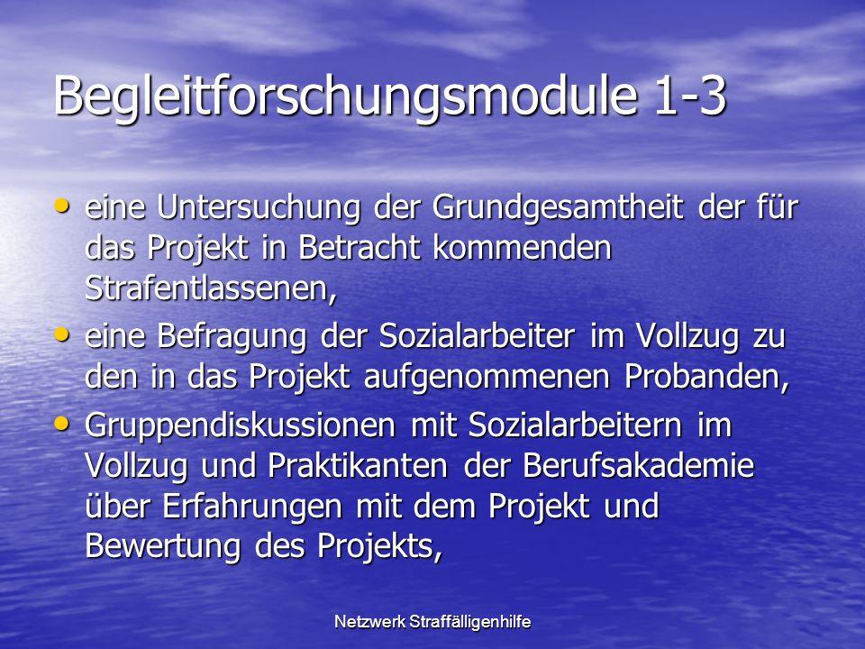 Begleitforschungsmodule 1-3