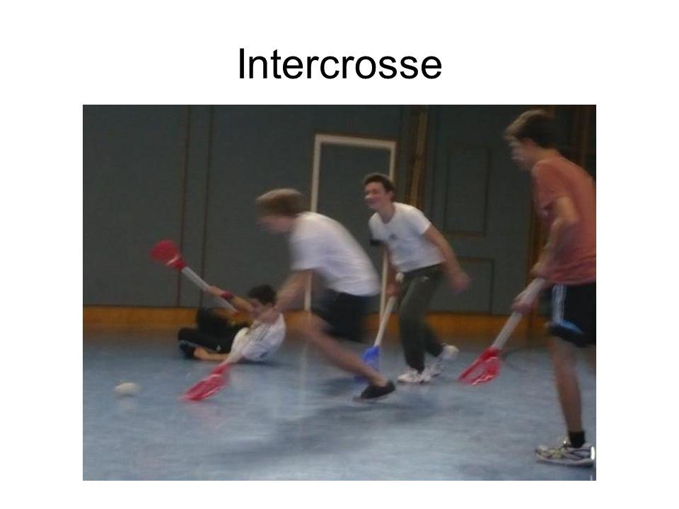 Intercrosse