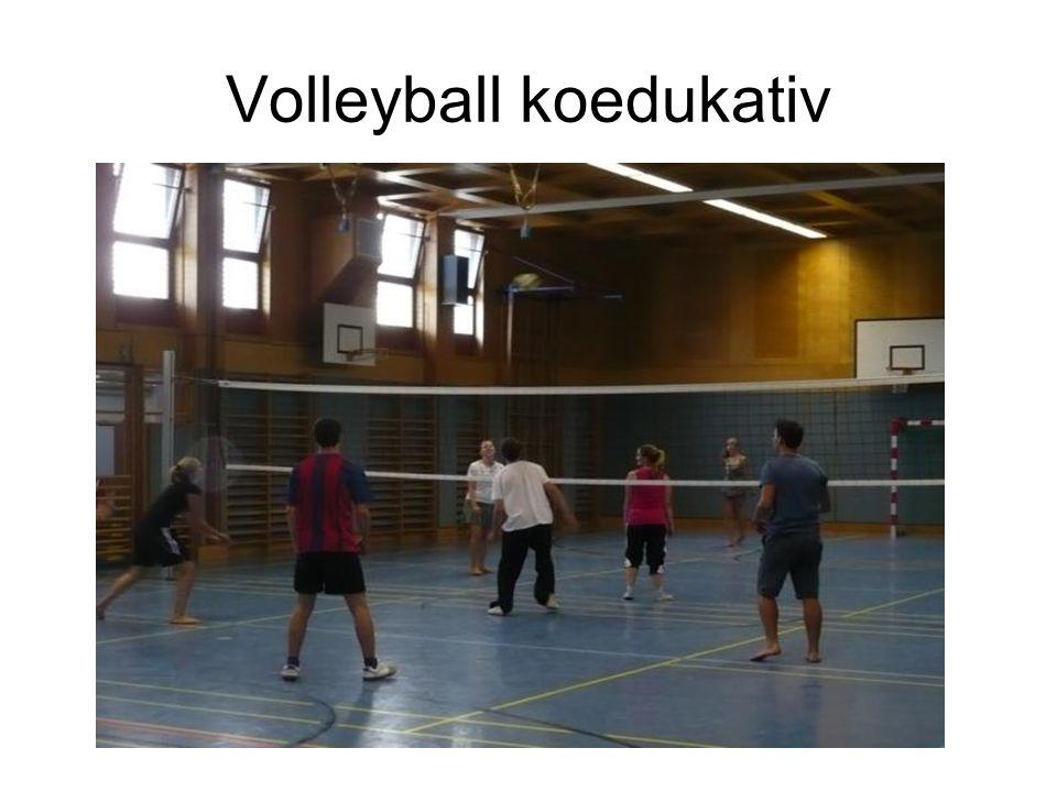 Volleyball koedukativ