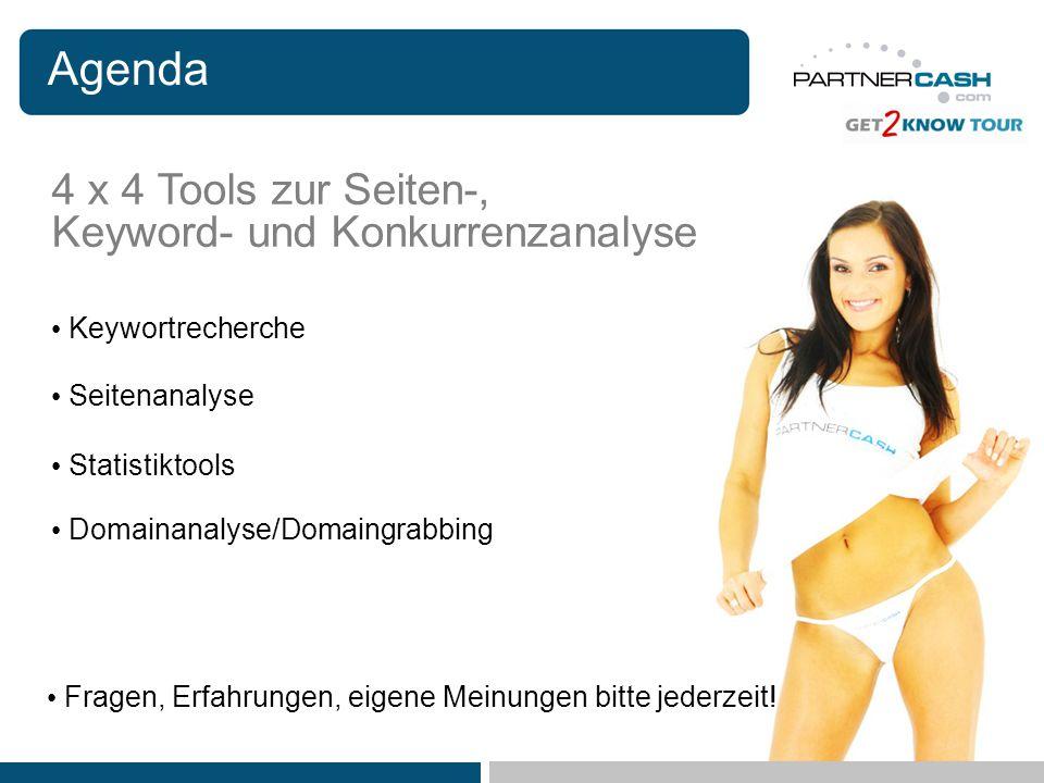 Agenda 4 x 4 Tools zur Seiten-, Keyword- und Konkurrenzanalyse