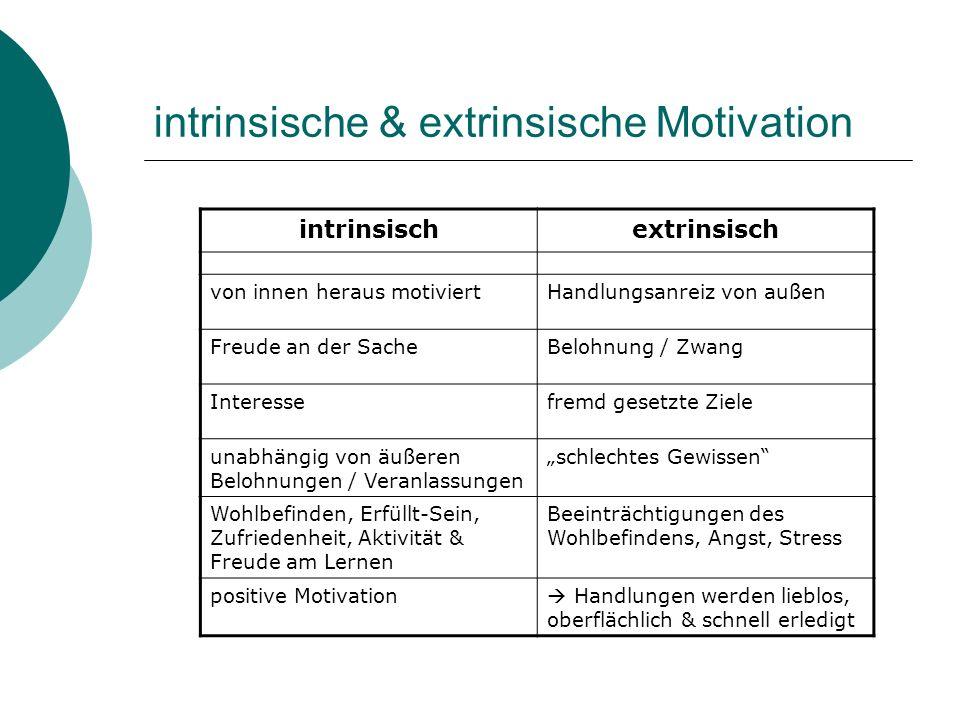 intrinsische & extrinsische Motivation