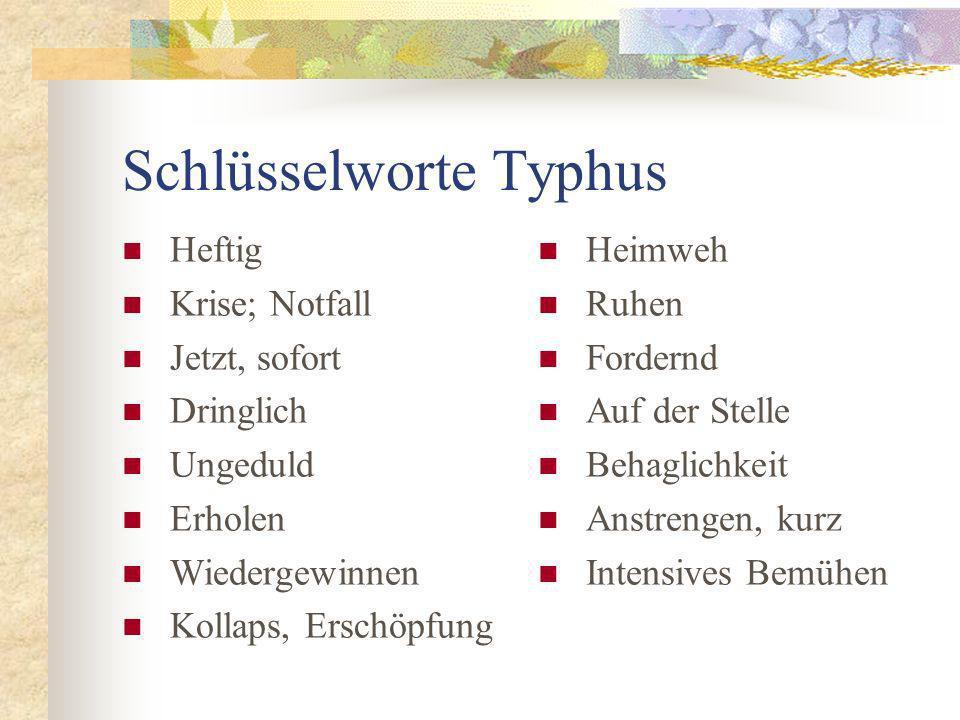 Schlüsselworte Typhus