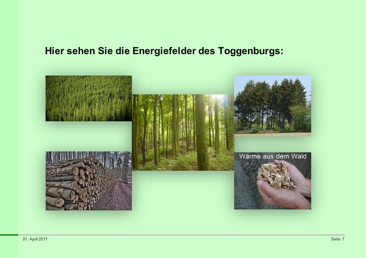 Hier sehen Sie die Energiefelder des Toggenburgs: