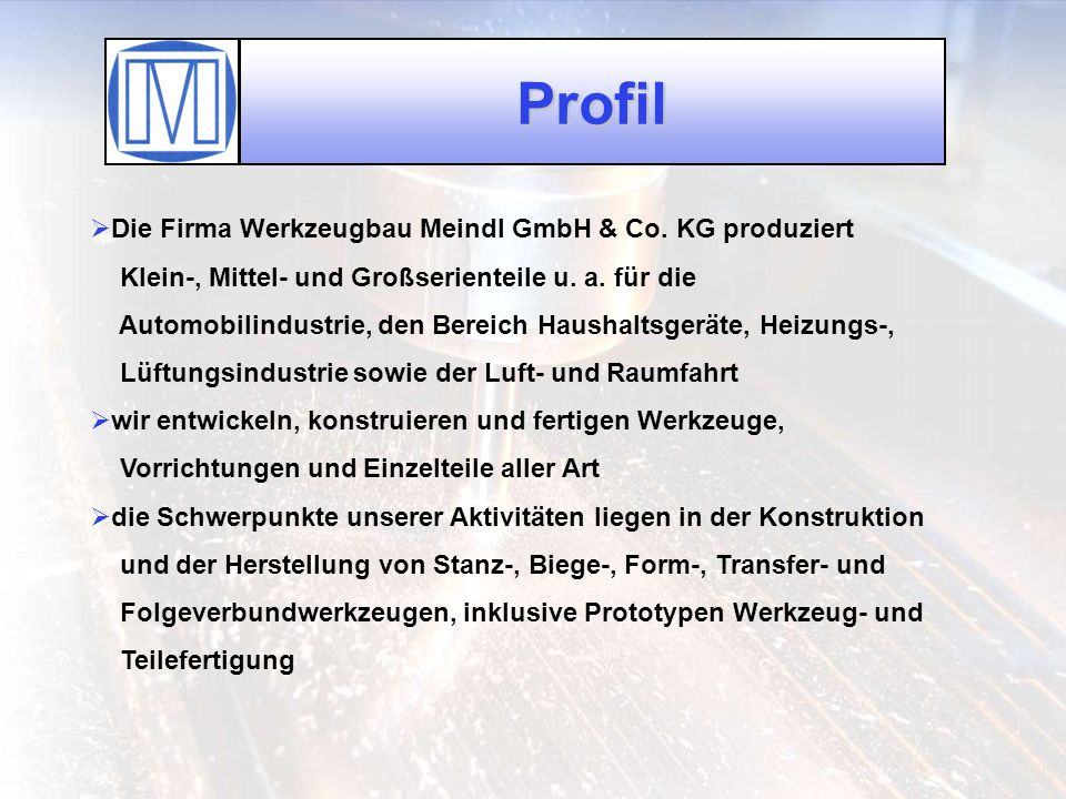 Profil Die Firma Werkzeugbau Meindl GmbH & Co. KG produziert