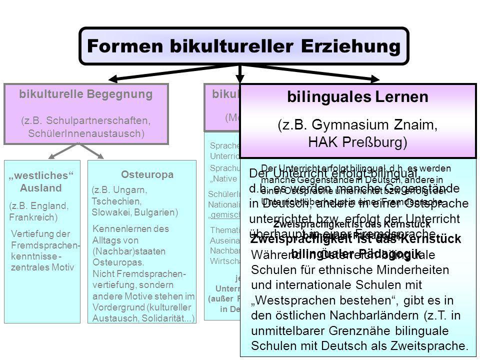 Formen bikultureller Erziehung