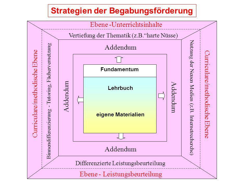 Strategien der Begabungsförderung