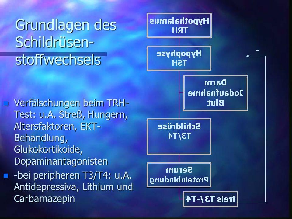 Grundlagen des Schildrüsen-stoffwechsels