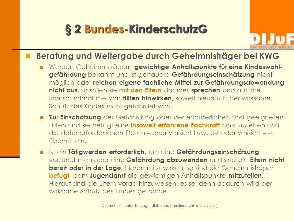 § 2 Bundes-KinderschutzG