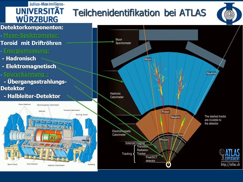 Teilchenidentifikation bei ATLAS