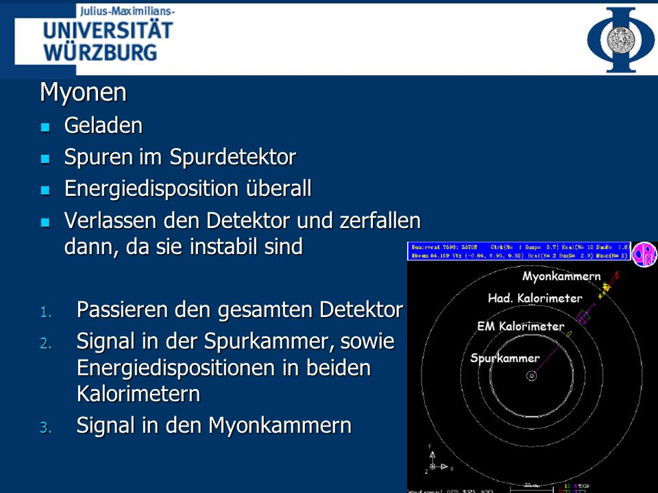 Myonen Geladen Spuren im Spurdetektor Energiedisposition überall