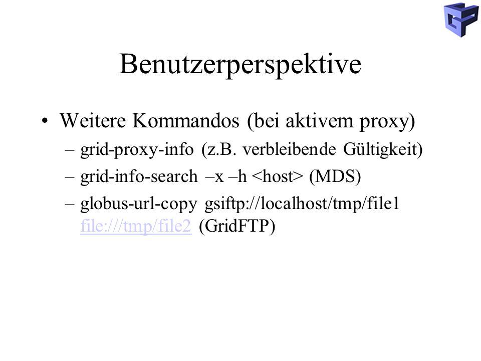 Benutzerperspektive Weitere Kommandos (bei aktivem proxy)