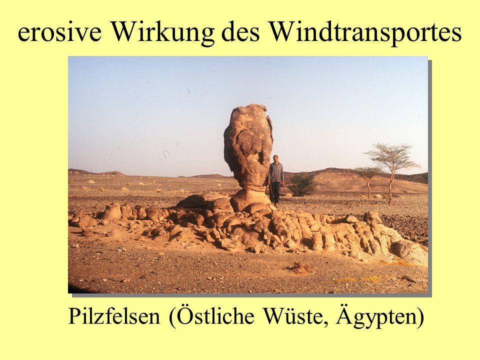 erosive Wirkung des Windtransportes
