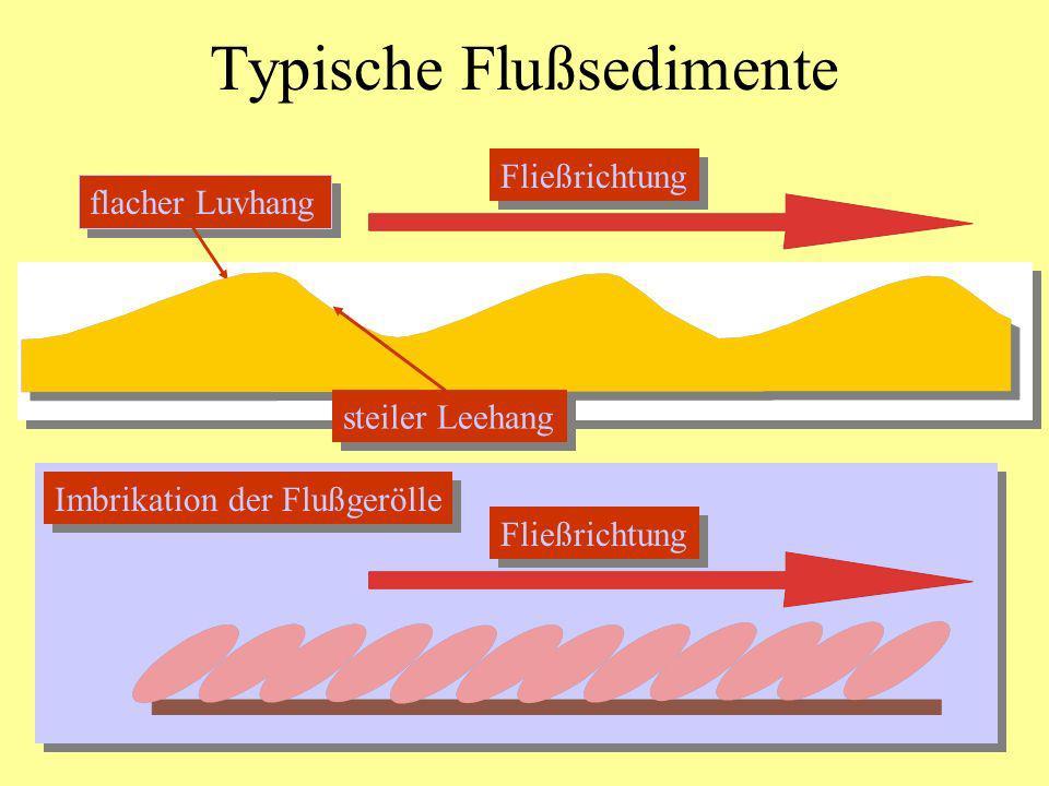 Typische Flußsedimente