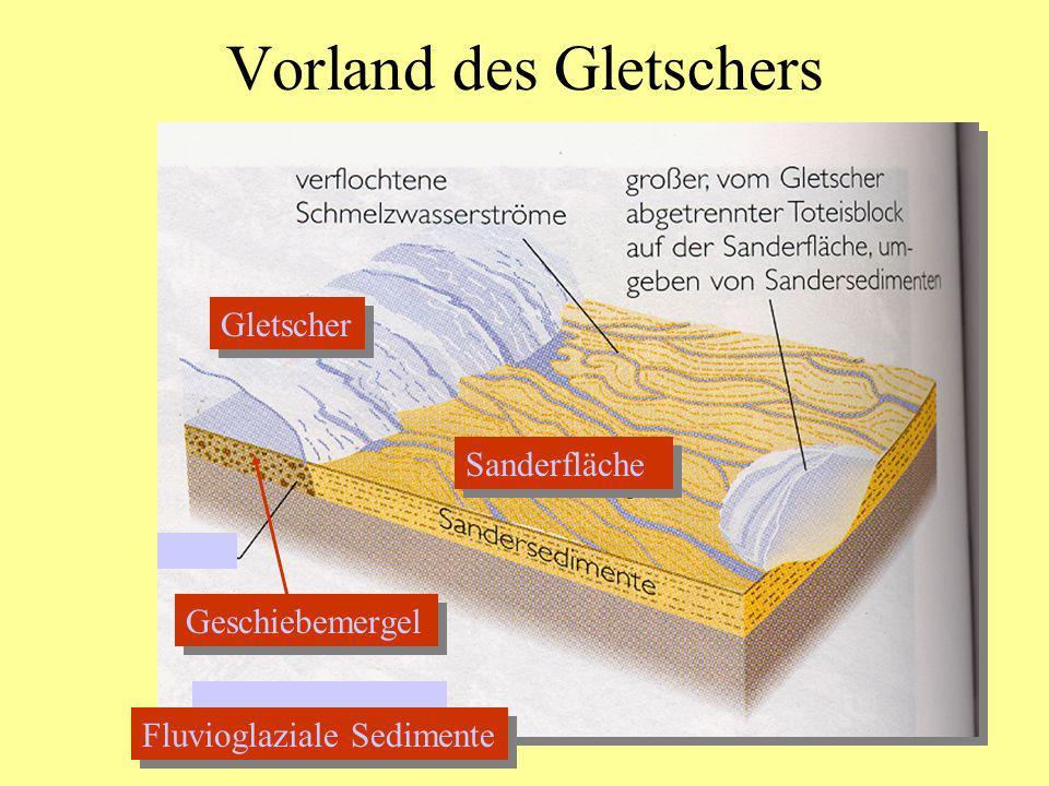 Vorland des Gletschers