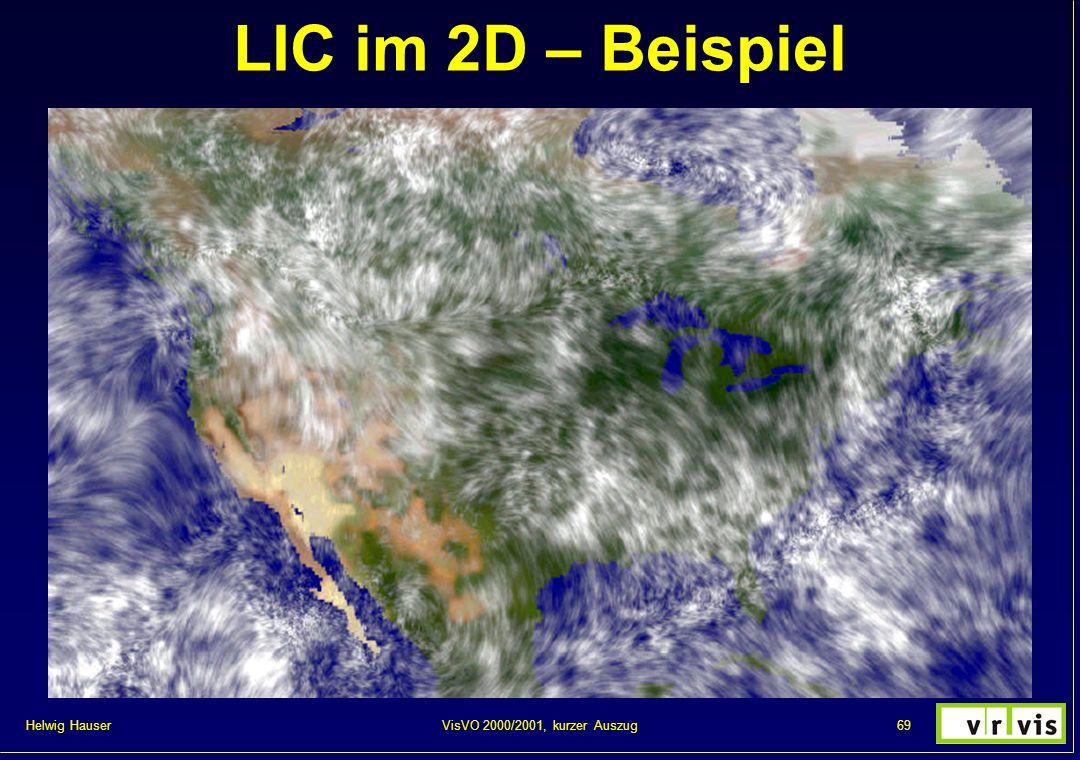 LIC im 2D – Beispiel VisVO 2000/2001, kurzer Auszug