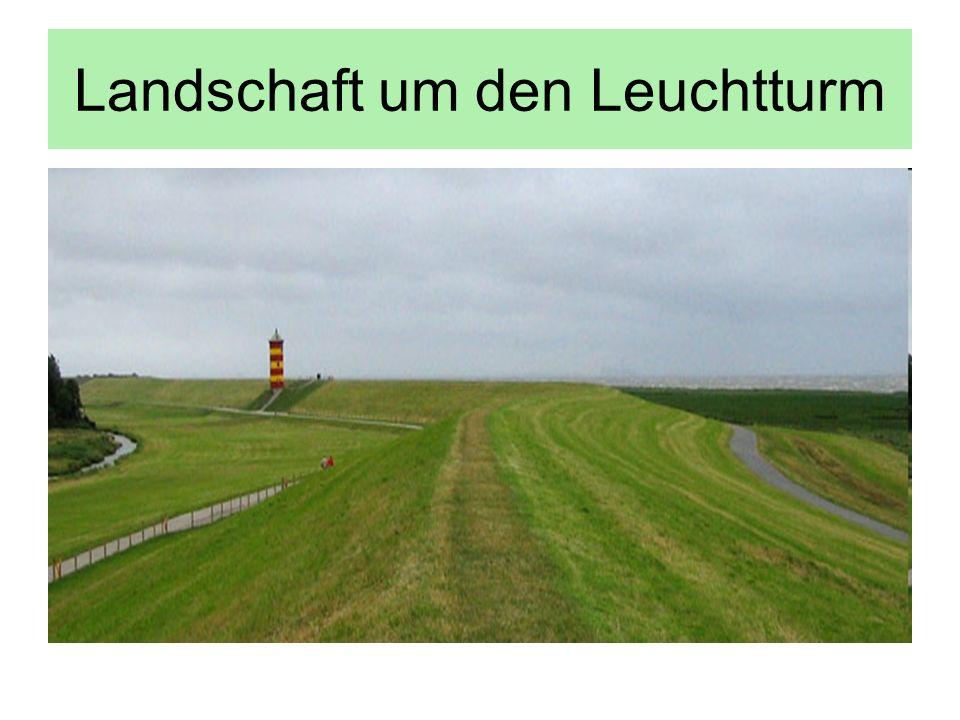 Landschaft um den Leuchtturm