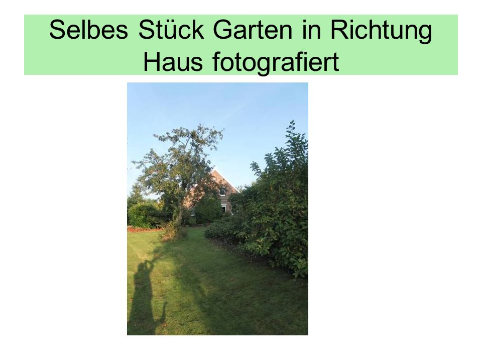 Selbes Stück Garten in Richtung Haus fotografiert