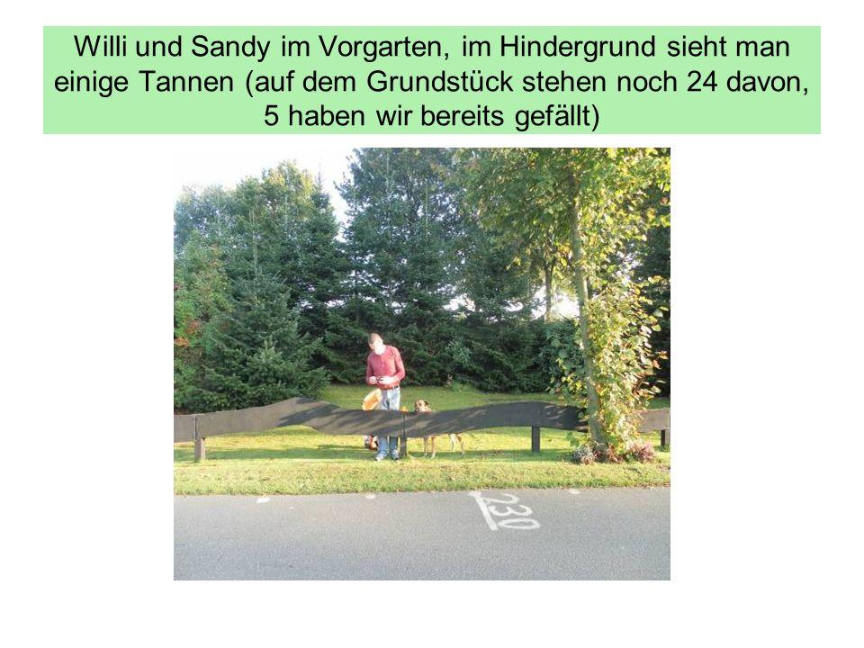 Willi und Sandy im Vorgarten, im Hindergrund sieht man einige Tannen (auf dem Grundstück stehen noch 24 davon, 5 haben wir bereits gefällt)
