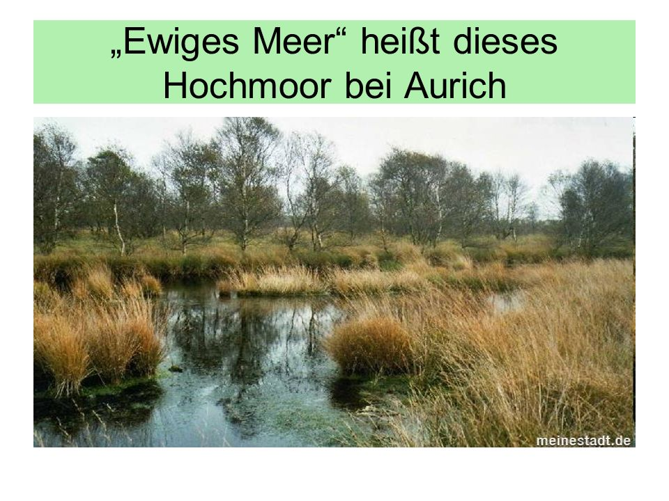 """Ewiges Meer heißt dieses Hochmoor bei Aurich"