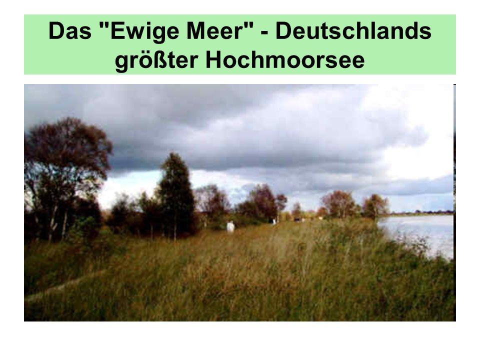 Das Ewige Meer - Deutschlands größter Hochmoorsee