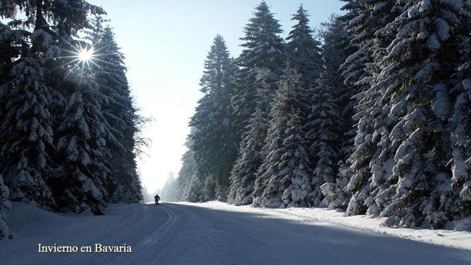 Invierno en Bavaria
