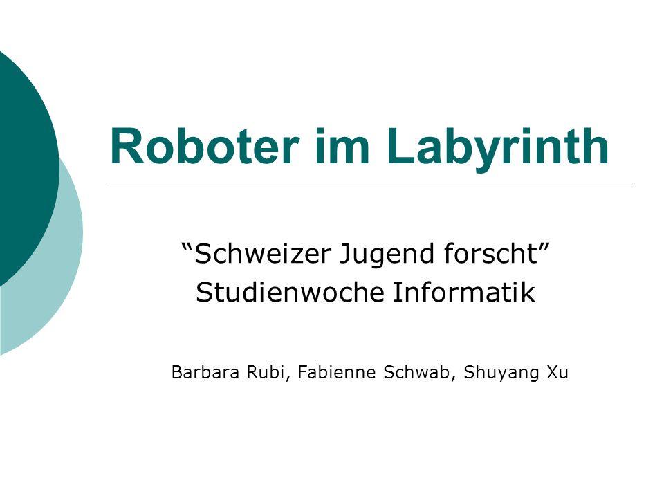 Roboter im Labyrinth Schweizer Jugend forscht