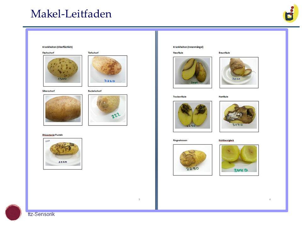 Makel-Leitfaden
